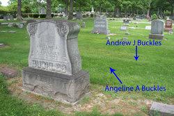 Andrew Jackson Buckles