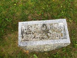 Henry J Niles