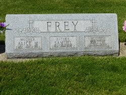Magdalena Mattie <i>Anderson</i> Frey