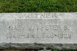 Peter S Waltner