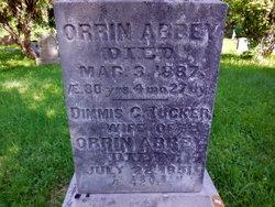 Orrin Abbey