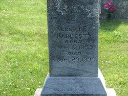 Albert Eugene Hardesty