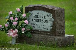 Amelia Ernestine <i>Feldt</i> Anderson