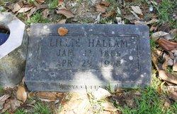 Lillian Irene <i>Hallam</i> Boyd