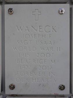 Joseph F Waneck
