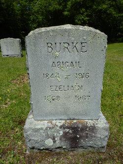 Abigail Burke