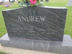 Harry W Andrew