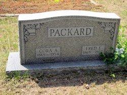 Alfred Eugene Packard
