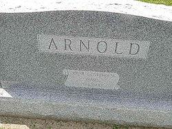 Carl E. Arnold