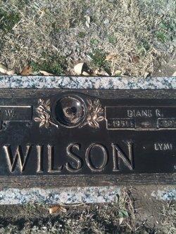 Diane <i>Ragsdale</i> Wilson