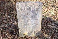 Polly Fry