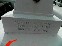 Agnolia <i>Anselve</i> Lafont