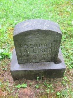 Brenda L. Allison
