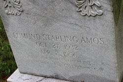 Edmund Sterling Amos