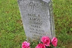 Paul E Amos
