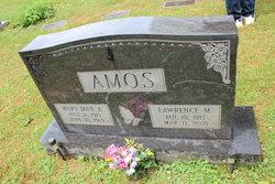 Mary Jane Amos