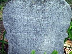 Brittiemort Burrows