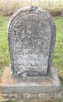 Sarah Elizabeth <i>Bennett</i> Baird