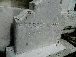 Forrest Anthony Esponge