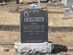 Catherine Canova