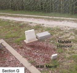 Hiram M. Merrell