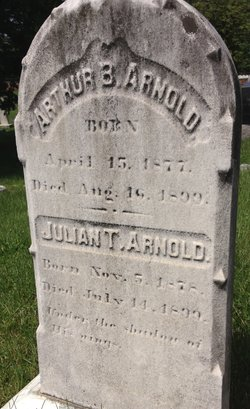 Julian T Arnold