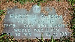 Harry J. Watson