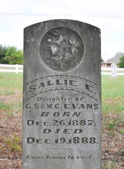 Sallie E. Evans