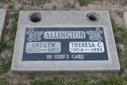 Theresa Caroline <i>Vincent</i> Allington