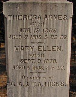 Mary Ellen Hicks