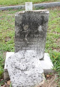 Mary Ann <i>Johnson</i> Everett
