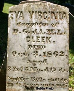 Eva Virginia Cleek