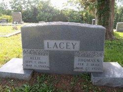 Thomas W Lacey