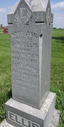 Mary Ann <i>Jones</i> Ellis