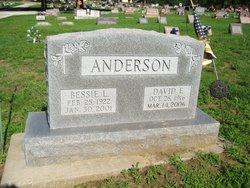 David Earl Anderson