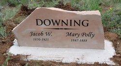 Mary Frances Polly <i>Trimble</i> Downing