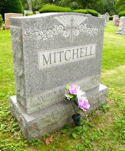 Andrew W Mitchell