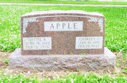 Nettie B. <i>Stevens</i> Apple