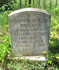Evelyn McMurtrie <i>Wayland</i> Pinkerton