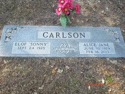 Alice Jane <i>O'Dell</i> Carlson