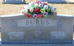 Harold Allen Burks