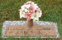 Dorothea <i>Cook</i> Anderson