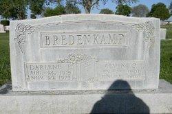 Alvin C Bredenkamp