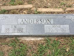 I. M. Anderson