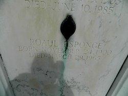 Raoul Joseph Esponge
