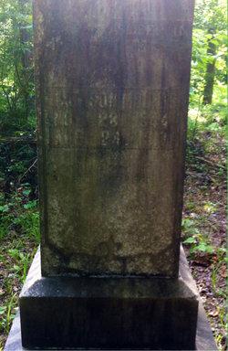 Andrew Jackson Mounts