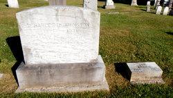 Nellie Mary <i>Sampson</i> Johnston