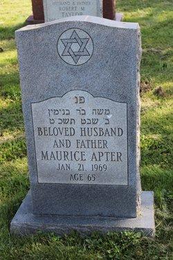 Maurice Apter