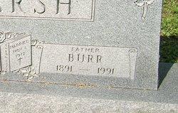 John Burr Marsh