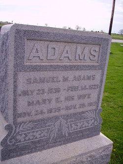 Mary Elizabeth <i>Austin</i> Adams